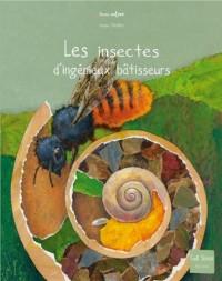 Les insectes, d'ingénieux bâtisseurs