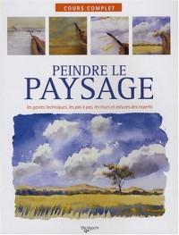 Peindre le paysage : Les gestes techniques, les pas à oas, les trucs et astuces des experts