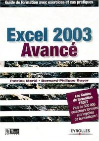 Excel 2003 avancé : Guide de formation avec exercices et cas pratiques