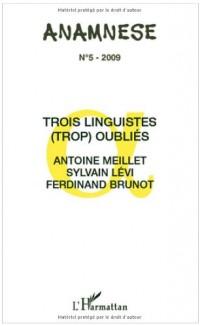 Anamnèse, N° 5 : Trois linguistes (trop) oubliés : Antoine Meillet, Sylvain Lévi, Ferdinand Brunot