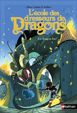 Le dragon fou ! (5) [Poche]