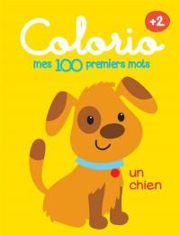 100 Premiers Mots - Chien (Mes)