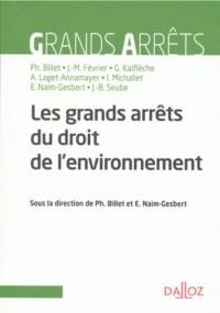 Les grandes décisions du droit de l'environnement