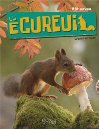 Ecureuil (l)