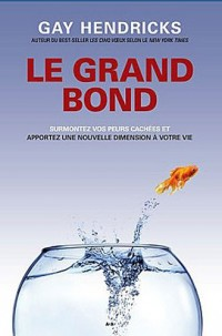 Le grand bond - surmontez vos peurs cachees