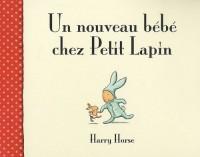 Un nouveau bébé chez Petit Lapin