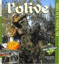 L'Olive : De l'arbre au moulin