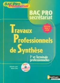 TRAVAUX PROFESSIONNELS DE SYNTHESE 1ERE ET TERM PROFESSIONNELLES - BAC PRO SECRETARIAT BAC PRO TRAN Livre scolaire