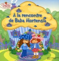 Charlotte aux Fraises : A la rencontre de Baba Hortensia
