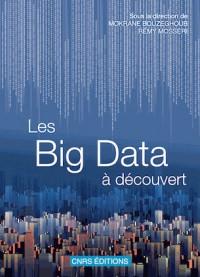 Les Bid Data à découvert : Le traitement des données numériques
