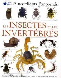 Les insectes et les invertébrés