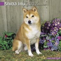 Calandrier 2012 - Shiba Inu