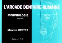 L'arcade dentaire humaine : Morphologie