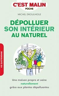 Dépolluer son intérieur, c'est malin : Une maison propre et saine naturellement grâce aux plantes dépolluantes