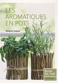 Les aromatiques en pots