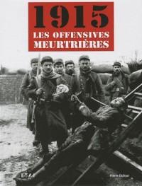1915, les offensives meurtrières