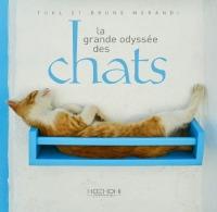 La Grande Odyssée des Chats