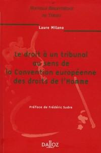 Le droit à un tribunal au sens de la Convention européenne des droits de l'Homme