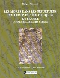 Morts dans les sépultures collectives néolithiques en France : Des cadavres aux restes ultimes
