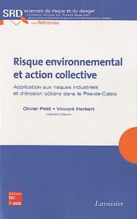 Risque environnemental et action collective collection sciences du risque et du danger