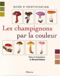 Les champignons par la couleur : Guide d'identification