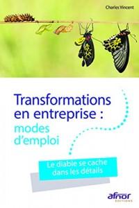 Transformations en entreprises : modes d'emploi: Le diable se cache dans les détails