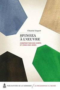 Spinoza à l'oeuvre : Composition des corps et force des idées