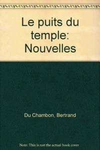 Le puits du temple