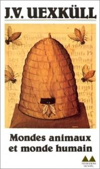 Gianlorenzo Bernini e Clemente IX Rospigliosi. Arte e architettura a Roma e in Toscana nel Seicento