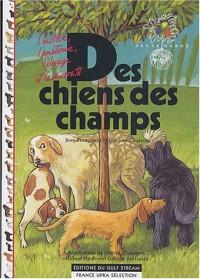Des chiens des champs