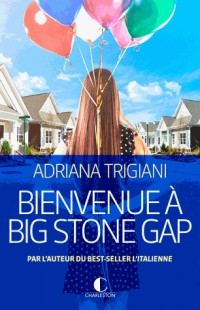 Bienvenue à Big Stone Gap