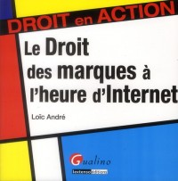 Droit des Marques a l'Heure d'Internet (le)