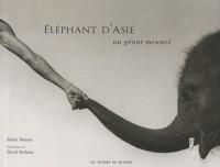 Eléphant d'Asie : Un géant menacé