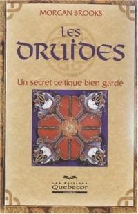 Les druides : Un secret celtique bien gardé
