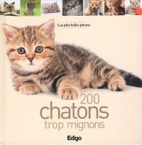 200 chatons trop mignons : Les plus belles photos