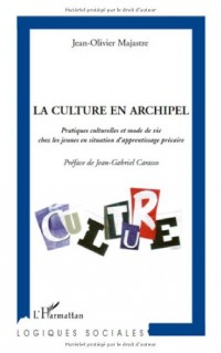 La culture en archipel : Pratiques culturelles et mode de vie chez les jeunes en situation d'apprentissage précaire