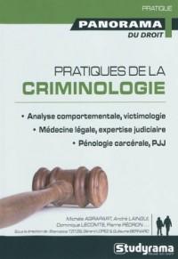Pratiques de la criminologie : Analyse comportementale, victimologie ; Médecine légale, expertise judiciaire ; Pénologie carcérale, PJJ