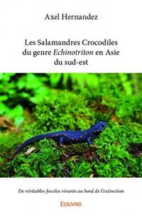Les salamandres crocodiles du genre echinotriton en Asie du sud-est : De véritables fossiles vivants au bord de l'extinction