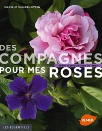 Des compagnes pour mes roses : Idées d'associations au jardin