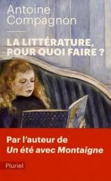 La littérature, pour quoi faire ? [Poche]