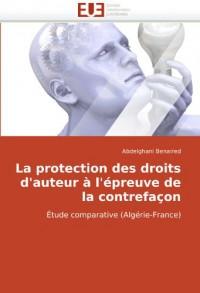 La Protection des droits d'auteur à l'épreuve de la contrefaçon : étude comparative (Algérie-France)