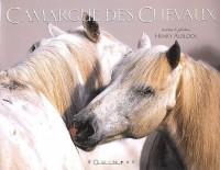 La Camargue des chevaux