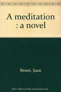 A meditation : a novel
