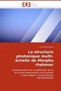 La structure photonique multi-échelle de morpho rhetenor