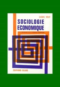 Sociologie économique, tome 2 : Sociologie de la décision économique