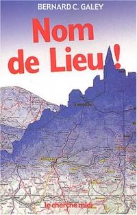 Nom de Lieu ! : Origines surprenantes des noms de villages, des noms des rues de Paris et de villes de province