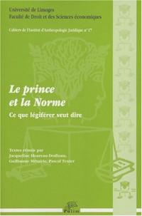 Le prince et la norme : Ce que légiférer veut dire