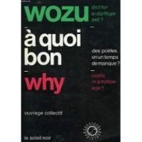 Wozu dichter in dürftiger zeit ?  A quoi bon des poètes en un temps de manque ? Why poets in a hollow age ?