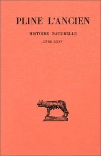 Histoire naturelle, Livre XXXV : De la peinture