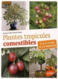 Plantes tropicales comestibles à cultiver à la maison